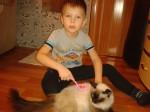 goleshev_g